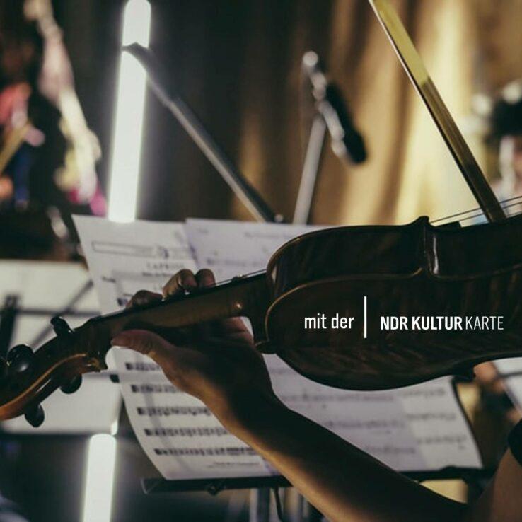 Eine Person spielt Geige.